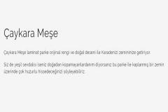 peli-golden-caykara-mese3