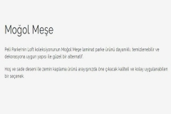 peli-loft-mogol-mese3
