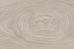 peli-wood-burgaz2